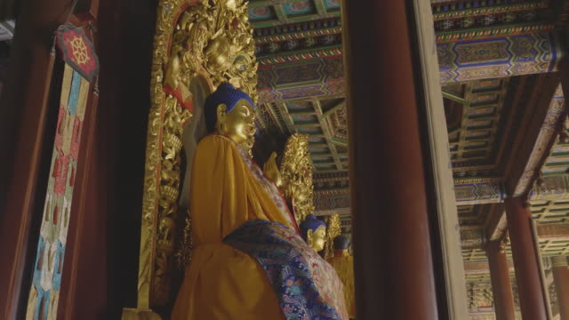 ws buddha statue inside of yonghe temple, beijing, china - lamasery stock videos and b-roll footage