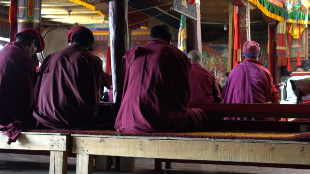 buddhist monks praying during the morning temple service at korzok monastery, ladakh, india - monk stock videos and b-roll footage