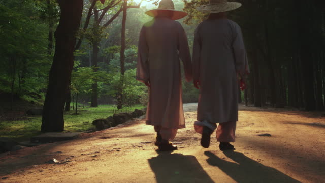 buddhist monks walking in forest of cypress trees at songgwangsa temple / suncheon-si, jeollanam-do, south korea - jeollanam do stock videos & royalty-free footage