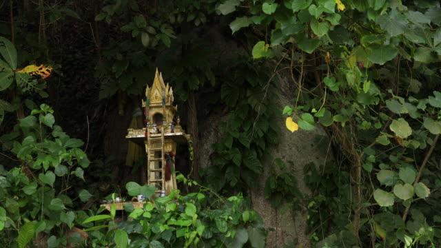 buddhistischen schrein im wald - eskapismus stock-videos und b-roll-filmmaterial