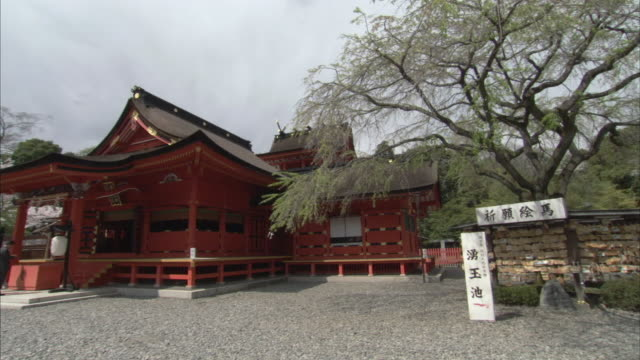 ws pan buddhist temple and courtyard with cherry blossoms / yamanashi prefecture, japan - pagoda stock videos & royalty-free footage