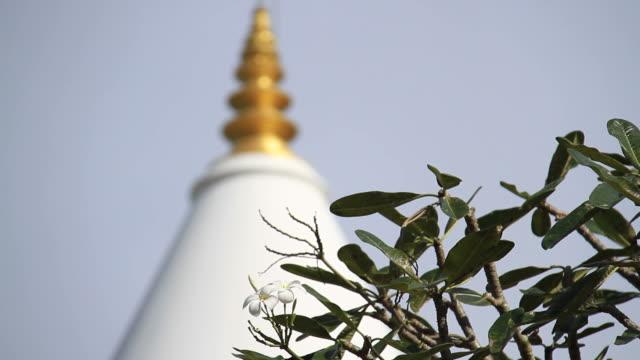 buddhist temple - sri lankan culture stock videos & royalty-free footage