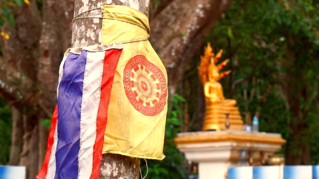 Buddhist Tree Conservation with Thai flags
