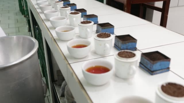 buddika weerasekara tea department manager of dilmah tea a unit of mjf holdings ltd tastes teas to evaluate quality in the tasting room of the... - caffeine molecule stock videos & royalty-free footage