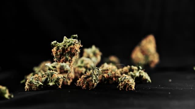 super slo mo buds of marijuana falling on a black surface - marijuana herbal cannabis stock videos & royalty-free footage