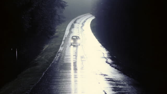 vídeos de stock, filmes e b-roll de td vw bug driving in the rain down a quiet road illuminated by moonlight and turning quickly out of the way of a wolf standing in the middle of the street / vancouver, british columbia, canada - um animal