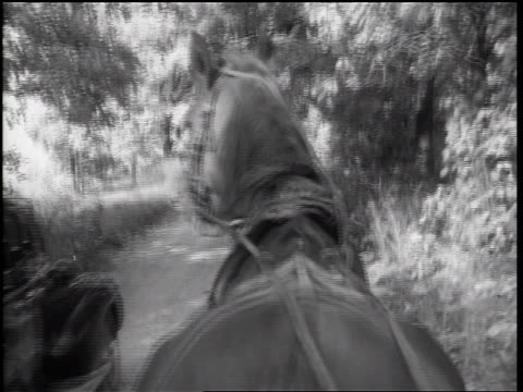 b/w 1938 rear buggy point of view car raising dust passing horse on country road - herbivorous stock videos & royalty-free footage