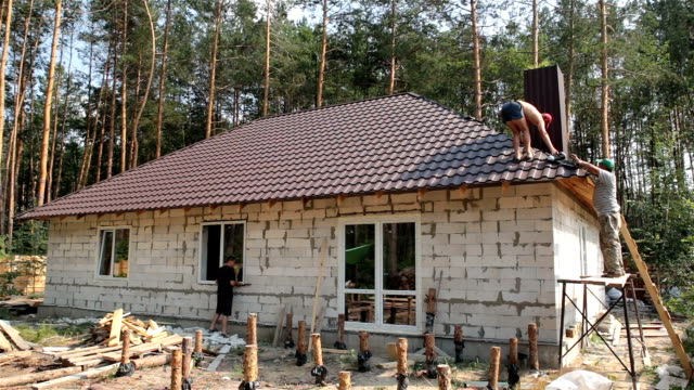Building a house in the forest.