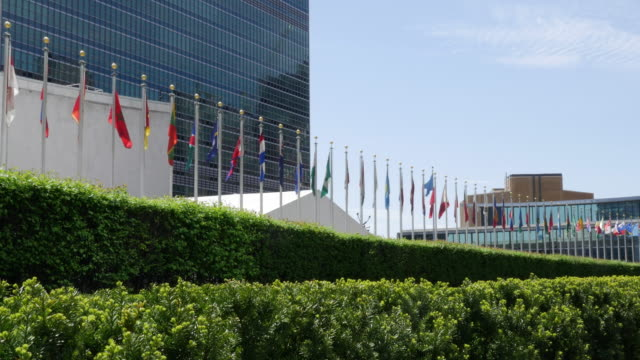 un building and national flags - united nations building stock videos and b-roll footage