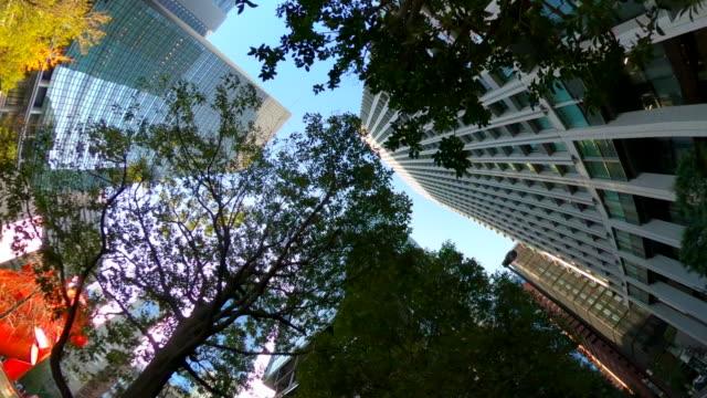 vídeos de stock, filmes e b-roll de prédio | olhar para o céu - plusphoto
