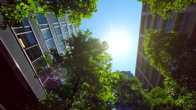 building with green - look up at the sky - green color stock videos & royalty-free footage