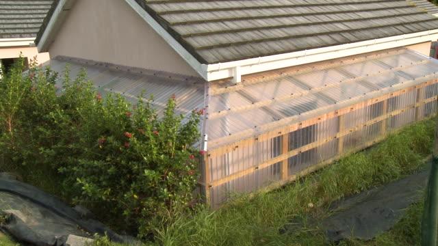building with long window panes - 園芸学点の映像素材/bロール