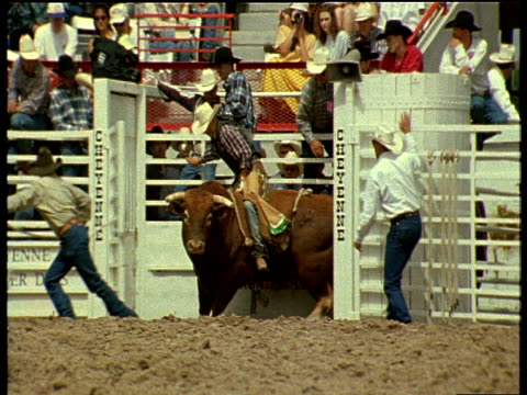 bull and cowboy unlocked into cheyenne frontier days rodeo main ring bull tries to buck off cowboy as spectators watch - rodeo stock videos & royalty-free footage