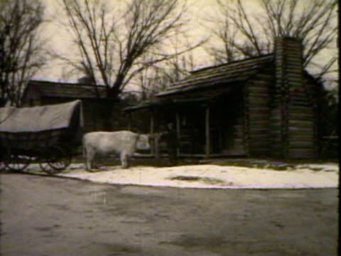 bull and wagon in front of a cabin - bestiame video stock e b–roll