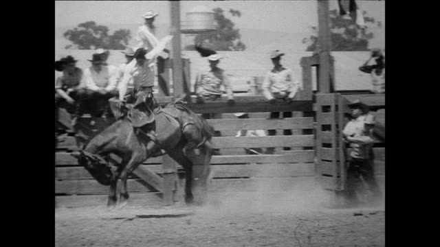 vídeos y material grabado en eventos de stock de / bull riding at the rodeo / cowboys fall off and rodeo clowns distract bulls / crowd cheering as cowboy runs out of the way 34th annual livermore... - 1951