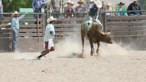 stockvideo's en b-roll-footage met bull cowboys op een rodeo rijden - stier mannetjesdier