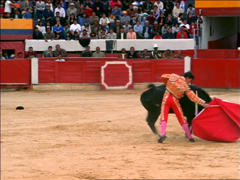 bull with banderillas in neck circling + charging matador with red cape / bogota, colombia - colombia stock videos & royalty-free footage
