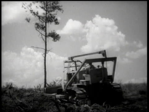 1944 WS bulldozer clearing a field, pushing down small tree / United States
