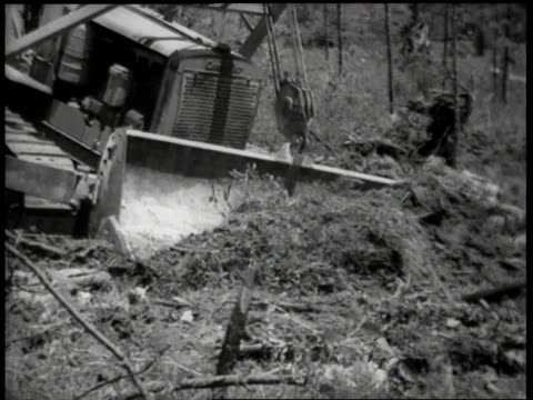 1944 WS bulldozer clearing a field / United States