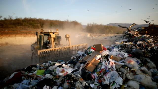 bulldozer moving garbage at the rubbish dump site at sunset - bulldozer stock videos & royalty-free footage