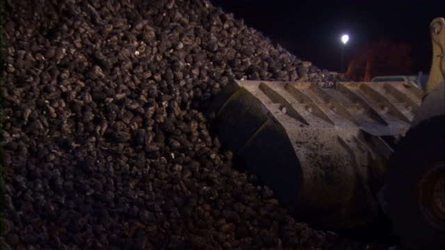 bulldozer picks up another batch of sugar beets and starts moving them. - bulldozer stock videos and b-roll footage