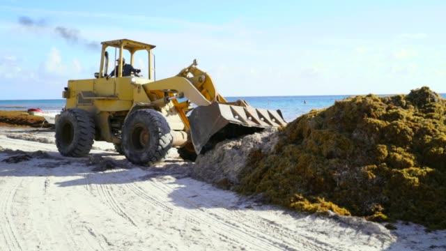 bulldozer pushes sand to add to pile - プラス記号点の映像素材/bロール