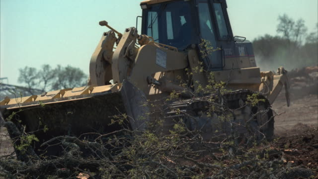 ms pan tu slo mo bulldozer pushing tree branches at construction site / cedar park, texas, usa - cedar park texas stock videos & royalty-free footage