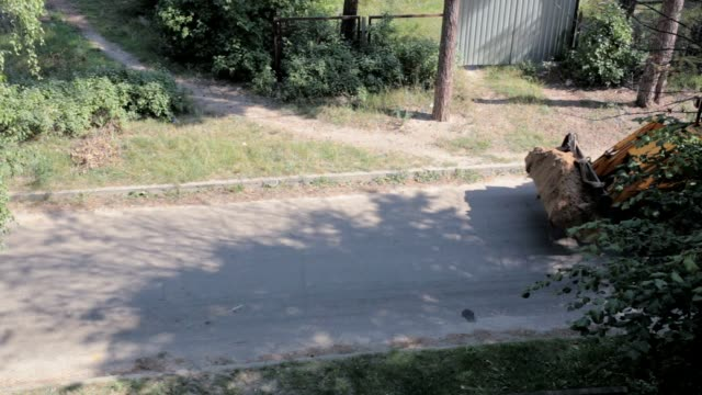 bulldozer transports the soil. - mestolo video stock e b–roll