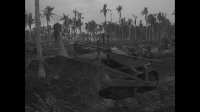 a bulldozer uproots a tall palm tree and moves dirt / an airplane with men clustered below on a muddy runway and seabee refueling / seen from under a... - 給油点の映像素材/bロール