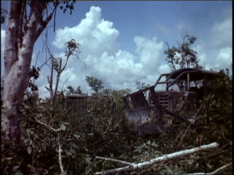 vidéos et rushes de bulldozers driving in the jungle / bulldozer clearing away a tree / man driving bulldozer - infanterie
