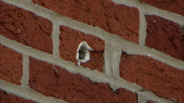 bullet hole in red brick wall of the historic farnsworth house inn & restaurant on baltimore street. pa, american civil war - gettysburg stock-videos und b-roll-filmmaterial