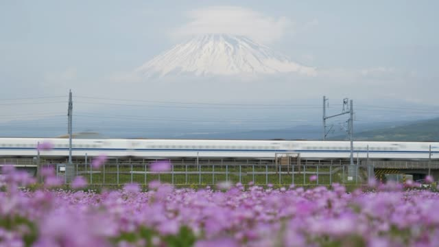 bullet train passing by mt. fuji - mt fuji stock videos & royalty-free footage