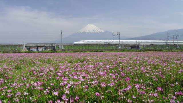 Bullet train travelling in front of Mt. Fuji in Japan