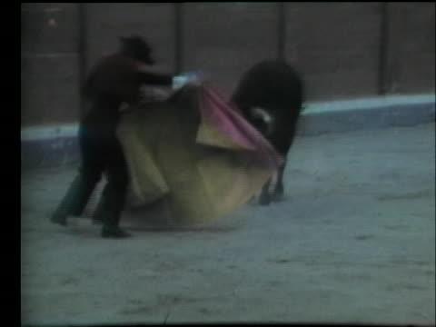 vídeos y material grabado en eventos de stock de bullfighter rosalia de columbia fights a bull in a stadium. - sport
