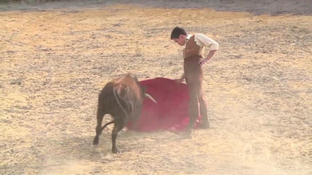 bullfighting returns to colombia's main plaza de santamaria on sunday - bullfighter stock videos & royalty-free footage