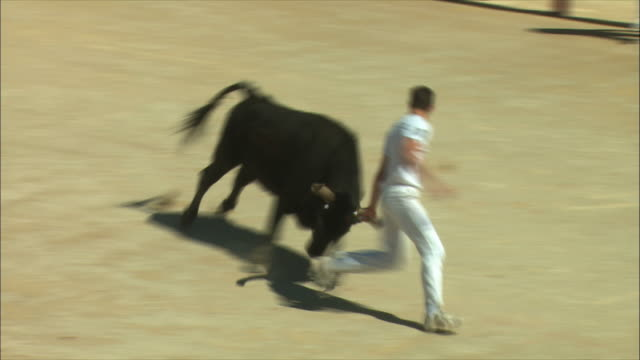 WS TS Bullfighting show / Nimes, Languedoc, France