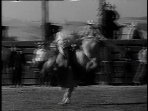 1939 montage bullriding at rodeo competition / livermore, california, united states - bocksprång bildbanksvideor och videomaterial från bakom kulisserna