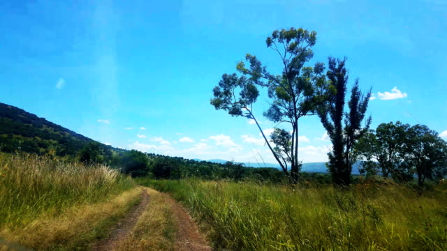 vídeos y material grabado en eventos de stock de camino de tierra lleno de baches en safari de akagera, rwanda - área silvestre