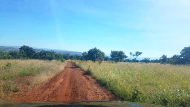 bumpy dirt road in the safari, rwanda - bumpy stock videos & royalty-free footage