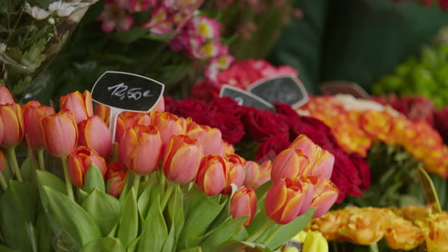CU Bunch of tulip flowers for sale in market stall / Paris, France