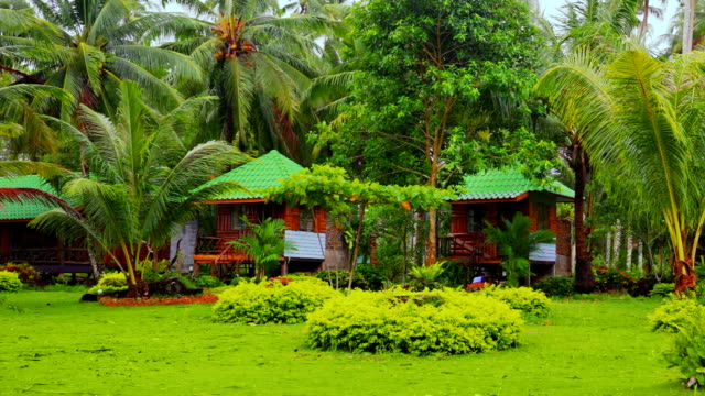 Bungalow in tropic