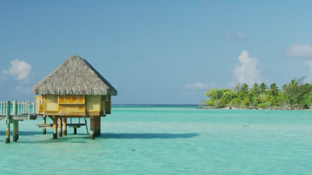 bungalow in tropical ocean / bora bora, french polynesia - insel tahiti stock-videos und b-roll-filmmaterial