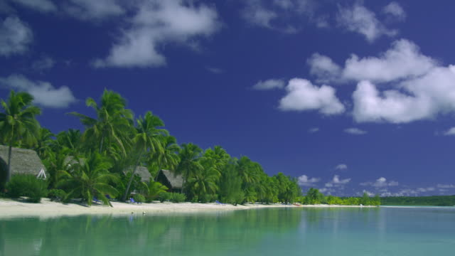 ws, pan, bungalows between palm trees at tropical beach, aitutaki lagoon, aitutaki, cook islands - aitutaki lagoon stock videos & royalty-free footage