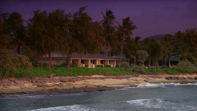 ws, bungalows facing ocean, oahu, hawaii, usa - fan palm tree stock videos & royalty-free footage