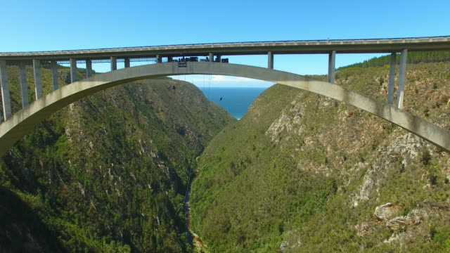 bungee jumper jumping off the blourkrans bridge - south africa stock videos & royalty-free footage