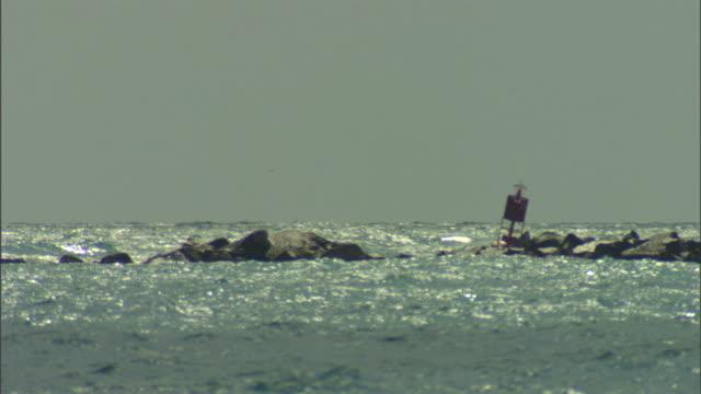 a buoy bobs near rocks on the miami coast. - buoy stock videos & royalty-free footage