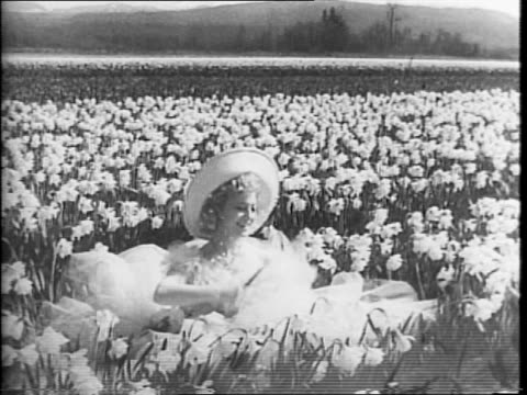 burlesque dancer sally rand rides on a horse pulling a carriage through a field of daffodils / close up of rand waving / close up of the horse with... - menschlicher arm stock-videos und b-roll-filmmaterial