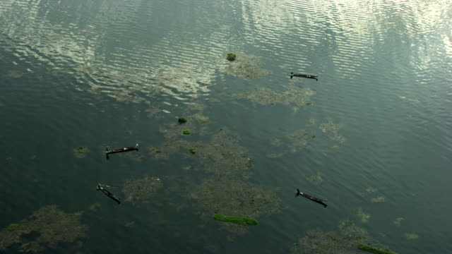 Burma-Myanmar : Canoes with fishermen