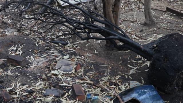 burned backyard - woolsey feuer stock-videos und b-roll-filmmaterial
