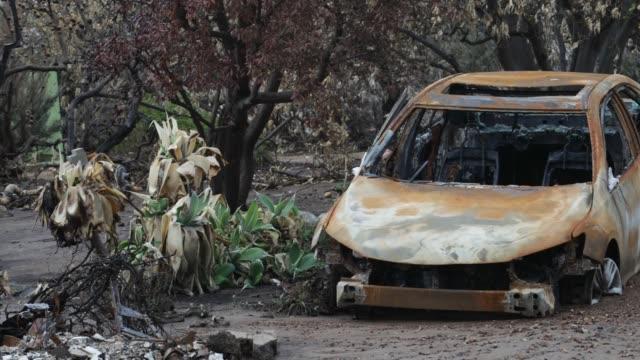 burned car - woolsey feuer stock-videos und b-roll-filmmaterial